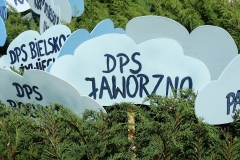 DSC0673324